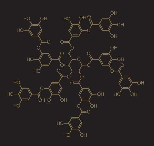 Strakka Polyphenol Structure.